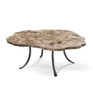 Petrified wood outdoor/indoor center table
