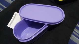 Tuppeware Lunchbox