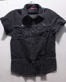 Polka dotted Black Polo