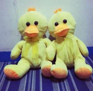 Twin Ducklings