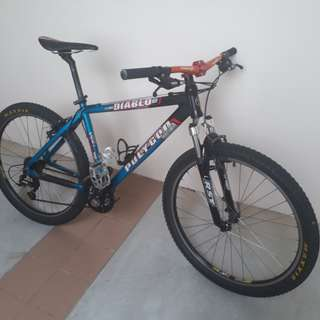 Polygon Mountain Bike