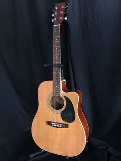 Rockstar Acoustic Guitar