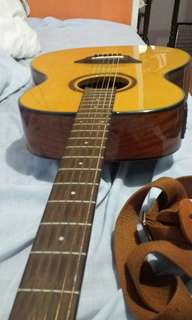 Guitar Gopher wood g110