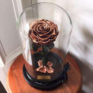 🚚 ROSE GOLD PRESERVED ROSE