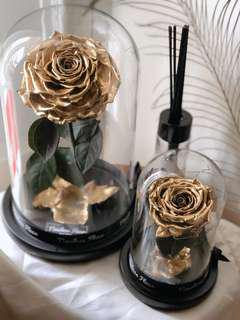 🚚 Gold Coated Preserved Rose