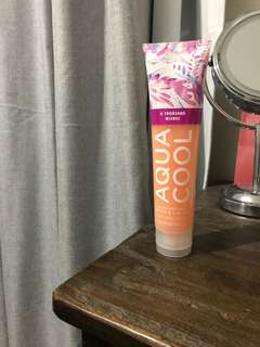 Bath & Body Works Aloe Lotion