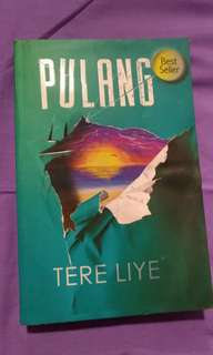 NOVEL PULANG - TERE LIYE