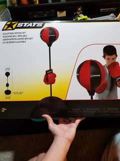 Adjustable boxing set