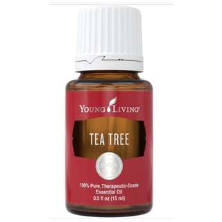 (FREE MAIL) Young Living Tea Tree 15ml