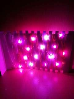 LED 燈串 - 三種紅