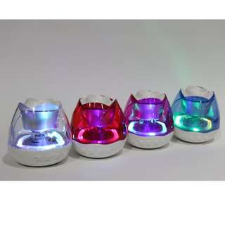 Bluetooth Speaker (with Spectrum Colorful Flashing Lights)