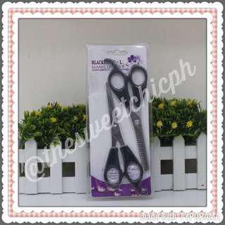 Salon Hair Scissors Two Pieces