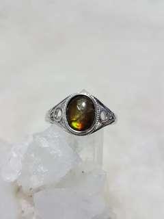 ⭐Ring (Ammolite*斑彩螺)