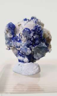 Blue Fluorescent Lapis & Translucent Afghanite Crystals with Pyrite in UV Reactive from Afghanistan