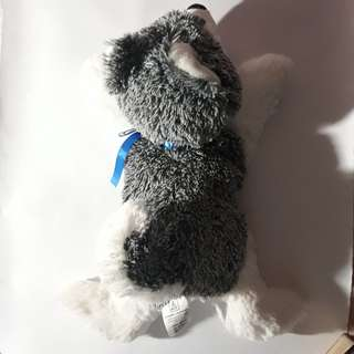 Husky Stuffed Toy