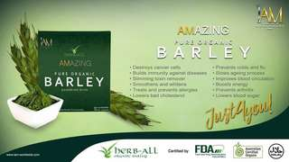 Amazing Pure Organic Barley Powdered Drink Mix