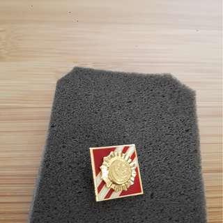 vintage military collar/tie pin