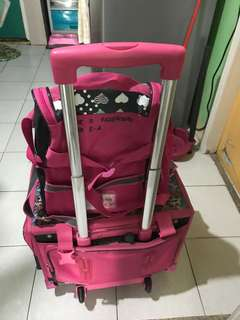 Trolley Bag with Lunch Bag ( Used for 1 week)
