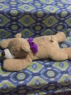 Cute teddy bear stuff toy (ORIGINAL)