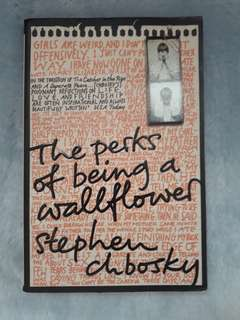 Stephen Chboskys The perks of being a wallflower