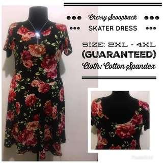 Cherry Skater Dress