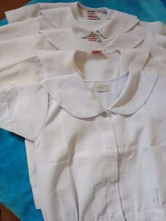 5n1 Blouse School uniform