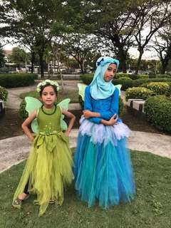 Costume Birthday Tinkerbell (5yrs) & Periwinkle (8yrs)