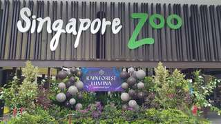 Singapore Zoo . Zoo Ticket . River Safari . Jurong Bird Park . Night Safari . Rainforest Lumina