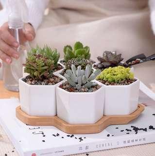 Six sided white ceramic pots