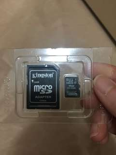 Kingston Micro 4 GB SD card