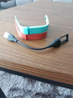 2 Fitbit Flex replacement bands + charger
