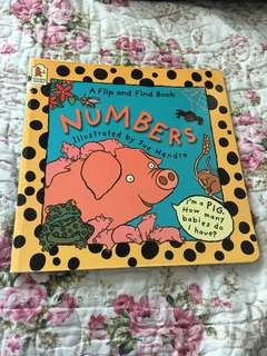 Flip and Find Numbers