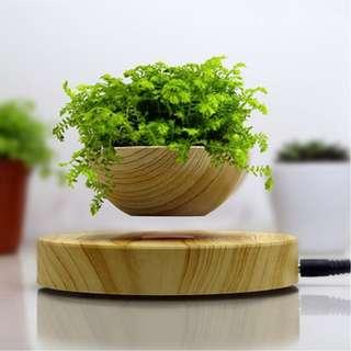 🚚 Levitate Plant Pot #Flower #Bonsai #Creative #Beautiful #Special