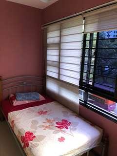 57 Havelock Room Rental