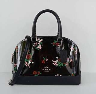 Coach Mini Sierra Black Floral Print