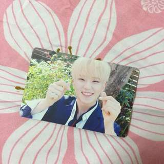 WTT SEVENTEEN TEEN AGE ORANGE PC HOSHI WONWOO