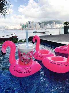 🚚 Flamingo Float