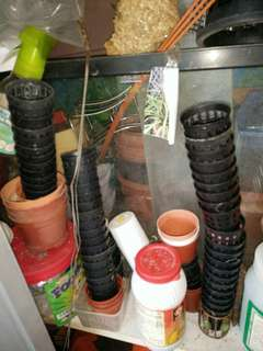 Small seeding  and water plant pots for gardening
