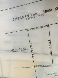 200 sqm Vacant Lot for Sale (Manila)