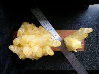💰黄金满地💰Tibetan Yellow Quartz Crystal Cluster