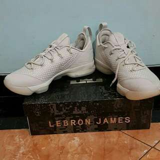 Lebron james14