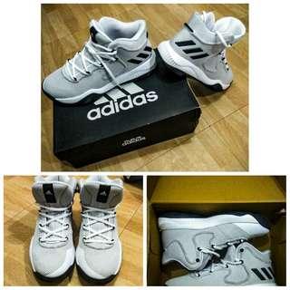 Adidas Crazy Explosive TD
