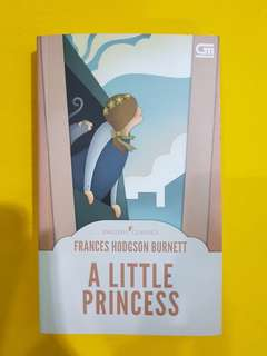 The Little Princess English Edition