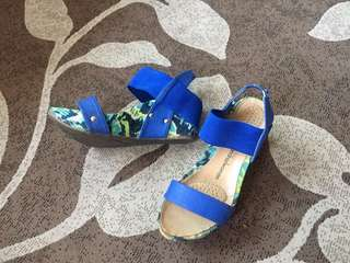 Blue wedge
