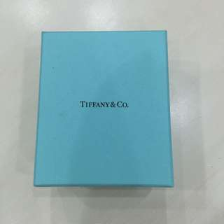Tiffany & Co Gold Neckless