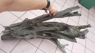 Aged Drift wood for landscape decorations