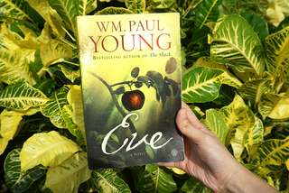 Eve by WM. Paul Young (same author as The Shack)