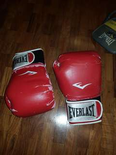 Everlast 12oz Boxing gloves