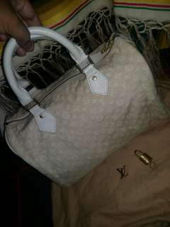 Louis vuitton speedy 30 minilin