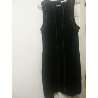 Sleeveless Dress (Mango)